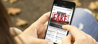 'New generation of disinformation' awaits next Commission, says rights group