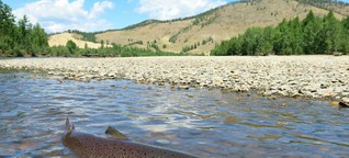 The Ultimate Fishing Guide to Mongolia
