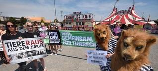 Wilder Streit um wilde Tiere