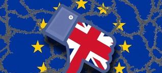 Soziale Medien und das Brexit-Referendum - Propaganda, Lügen, Fake News