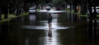 Wie der Klimawandel auf die Psyche schlägt