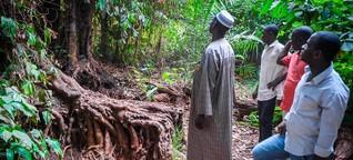 Guinea - Ein Dorf verklagt die Weltbank