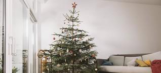 Tipps für ein grüneres Weihnachtsfest | DW | 22.12.2019