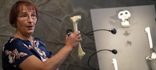 """Paläontologin Madeleine Böhme: """"Ich tue das, was ich tun muss"""""""