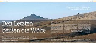 Den Letzten beißen die Wölfe