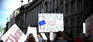 Die Folgen des Brexit: Chancen und Risiken für ein grünes Europa