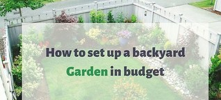 Setting up a backyard garden? 13 ways to complete the project on budget