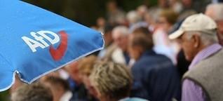 Hamburg-Wahl: Ein kleiner Dämpfer für die AfD