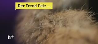 ZDF heute+: Mit gutem Gewissen Pelz tragen?