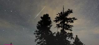 Meteorit im Vorgarten - Was ein golfballgrosser Stein über unseren Planeten verrät