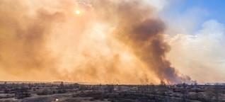Brände in Tschernobyl: Wenn radioaktive Wälder brennen