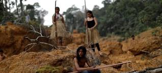 Amazonas: Bis er wieder brennt