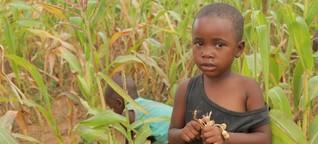 UN: Millionen Menschen hungern in Simbabwe