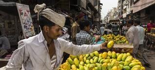 Die Königin der Früchte: In Mumbai sind die Mangos reif