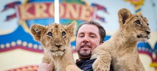 Manege frei:Tierschützer und Zirkusse streiten über Löwen und Co.