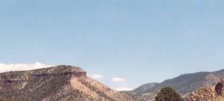 Kojoten am Rio Grande - zum Reinschnuppern [1]