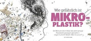 Megaseuche Mikroplastik