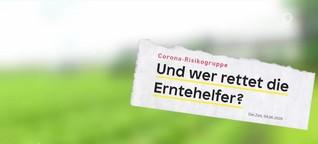 Serie: Erntehelfer in der Krise (1) | ARD-Mittagsmagazin