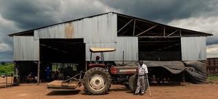 Simbabwe entschädigt weiße Farmer mit Milliarden