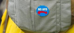 Es ist falsch, dass eine Waldorfschule das Kind eines AfD-Politikers ablehnt – VICE