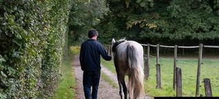 «Mit einem Pferd ist man nie allein»
