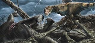 Dinosaurier: dem Flussmonster auf der Spur