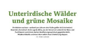 Unterirdische Wälder und grüne Mosaike