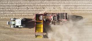 UTP-Richtlinie: Ein echter Schutz für Landwirte?