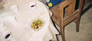 Oliven und Wein: Als Erntehelfer in Portugals Norden