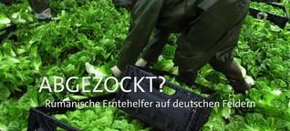 Serie: Erntehelfer in der Krise (2) | ARD-Mittagsmagazin