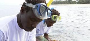 Biodiversität in Kenia: Schutzgebiet für Fische und Korallen