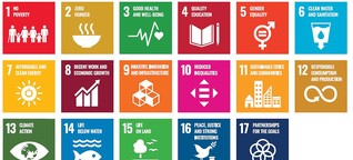 Die Sustainable Development Goals (SDGs) in Österreich