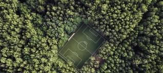 Was Klubs der Fußball-Bundesliga für die Umwelt tun - und was Umweltschützer vermissen