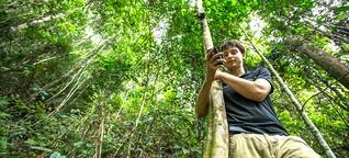 Umweltschutz mit Waldtelefon