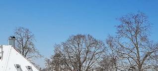 ☼ Wetter am 12. Februar 2021 – Schockgefroren