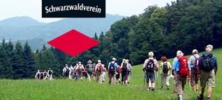 Wanderverein mit Problemen: Der Schwarzwaldverein sucht Wegweiser