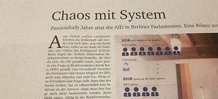 Chaos mit System