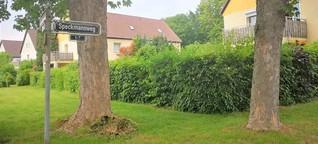 Die kürzesten Straßen Düsseldorfs