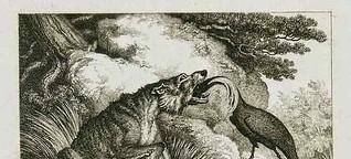 Vom Wolf und dem Kranich - Dank