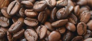 """""""Kaffee ist eine wahnsinnig spannende Welt"""""""