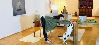 Mit Katzenbuckel in den herabschauenden Hund