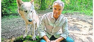 Hannes Jaenicke und sein engagiertes Plädoyer für den Wolf