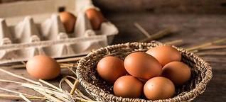 Organic Eggs production will double the income: Giriraj Singh