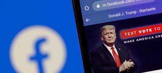 Bundestagswahl und digitale Desinformation II