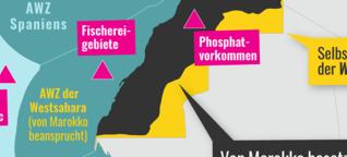 Wie die Westsahara geplündert wird