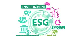 ▷ Nachhaltigkeit: Der Schlüssel zum Erfolg